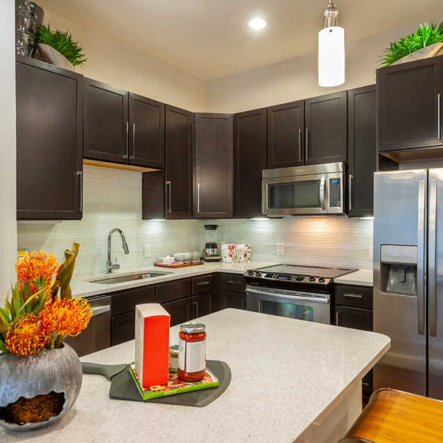 Dark kitchen finishes